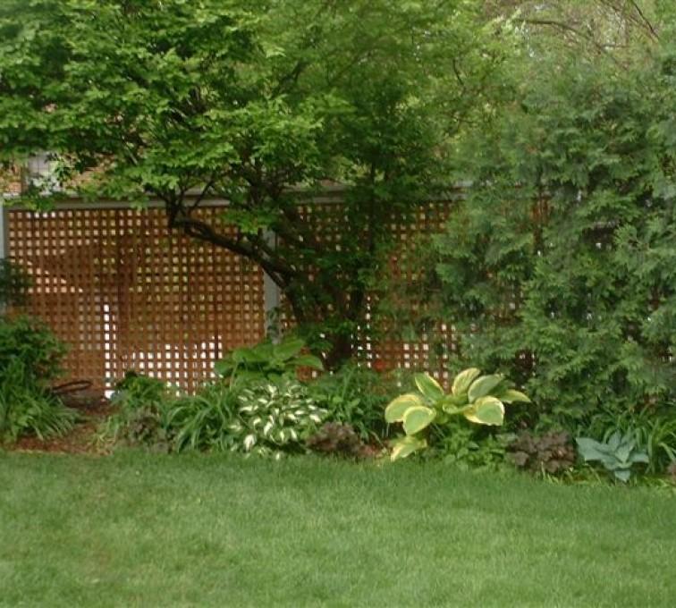 AFC Grand Island - Wood Fencing, 1032 Lattice Fence